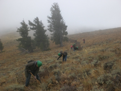 Volunteers working on trail on National Public Lands Day. Photo by USFS.