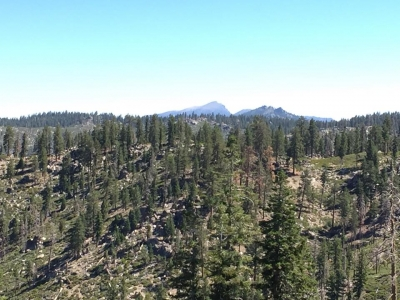 Scenic views. Photo by Troy Meadows, Sequoia NF.