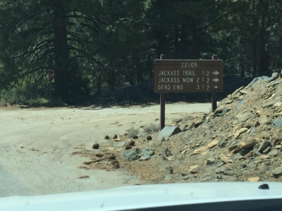 Signs pointing to Jackass Trail. Photo by Troy Meadows, Sequoia NF.