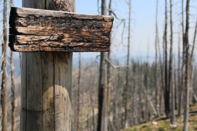Trail sign affected by the fires of 2000. Photo by David Lingle.