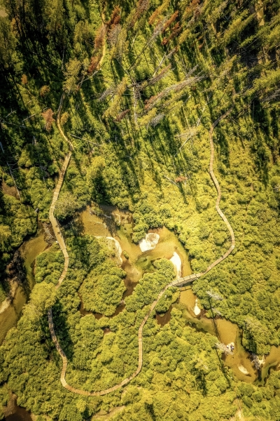 Aerial view of the trail and boardwalk from Sawtooth Assn. Photo by Austin Clegg.