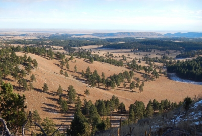 View from Rankin Ridge fire tower. Photo by NPS.
