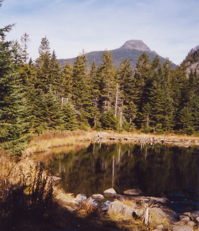 View of Camels Hump from Long Trail. Photo by Broken Images/wiki.