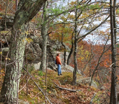 Scenery along the Metacomet-Monadnock Trail. Photo by Sarah Bierden.