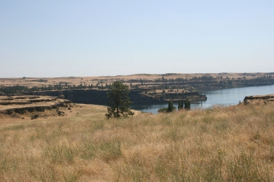 View of Rock Lake from Palouse to Cascades State Park Trail. Photo by Williamborg/wiki.