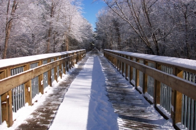 Snowy day on the American Tobacco Trail. Photo by Tony D'Amico.