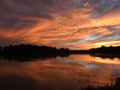 White River Sunset at the Jacksonport State Park near Tunstall Riverwalk Trail. Photo by Delana Epperson.