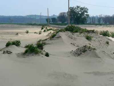Sand Dunes along County Road 34 in Boyer Chute Refuge. Photo by MONGO wiki.