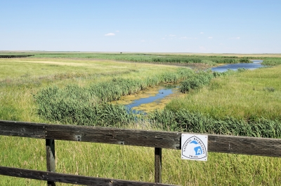 Prairie-Marsh Boardwalk - Benton Lake NWR - 7-20-18. Photo by Jim Walla.