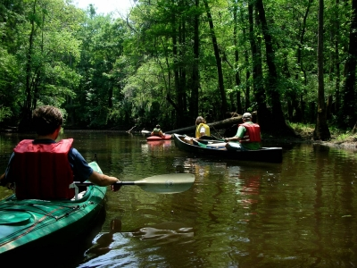 Congaree River Blue Trail in Congaree National Park. Photo by Ron Ahle.