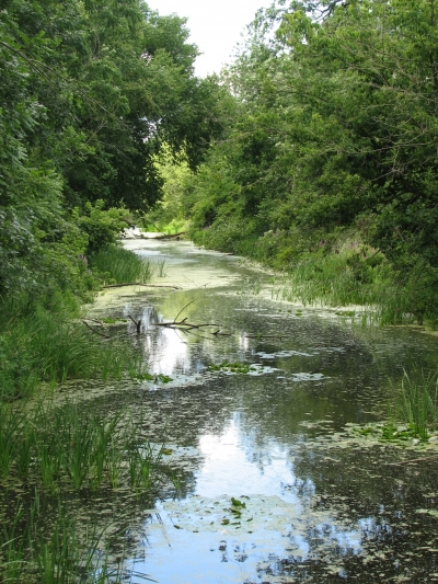 Canal Remnant. Photo by Stark County Park District.