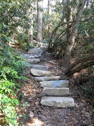 Steps on loop trail. Photo by Hillrie Quin.