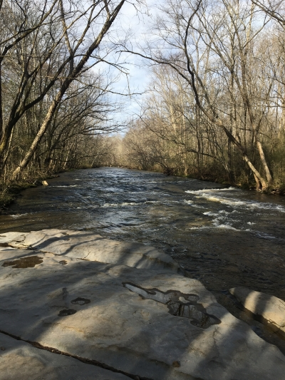 View of Swan Creek with its limestone bed. Photo by Donna Kridelbaugh.