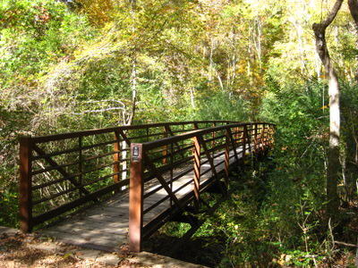 One of the four bridges in Bailey's Woods.