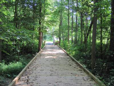 Boardwalk over Kings Creek