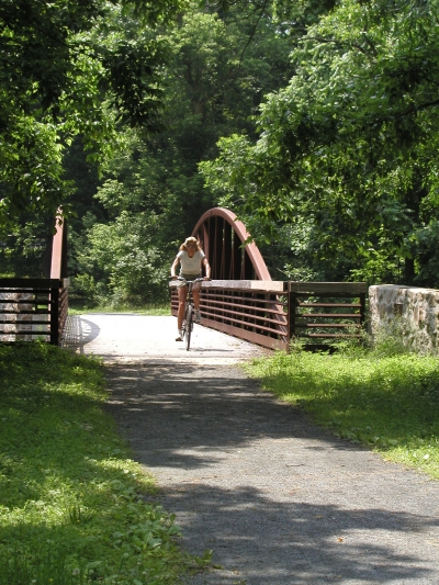 Biker on the Pomeroy Trail in White Clay Creek State Park. Photo by Avery Dunn.