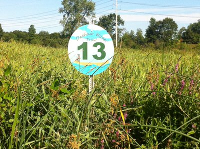 #13 Sign at Long Ditch Mouth.