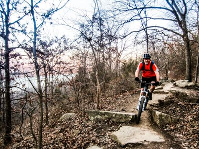 Mountain Biker on trail.