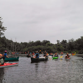 Photo from the Everglades of the North Paddle