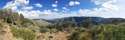 Sweeping views into North McKittrick Canyon from within Lincoln National Forest. Photo by Todd Shelley.