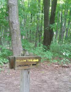 another trail marker