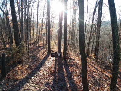 Ozark Trail - Karkahgne Section Sutton Bluff. Photo by Terry Hawn.