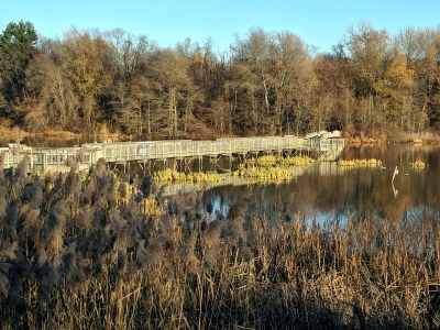 Wildlife viewing boardwalk on the East Impoundment Trail.  12-1-2017. Photo by Jim Walla.