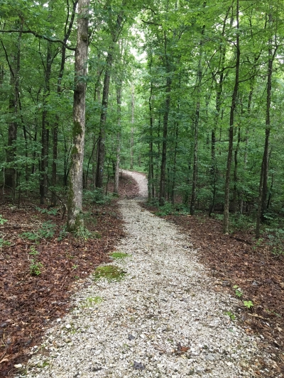 The trail gently winds through a reforested landscape and has a crushed rock surface. Photo by Donna Kridelbaugh.