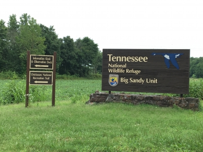 Entrance to the Big Sandy Unit of the Tennessee National Wildlife Refuge. Photo by Donna Kridelbaugh.