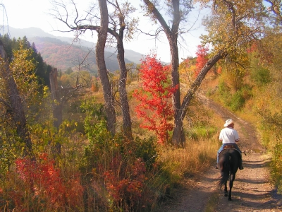 Equestrians enjoying a fall ride. Photo by Judy Nelson.