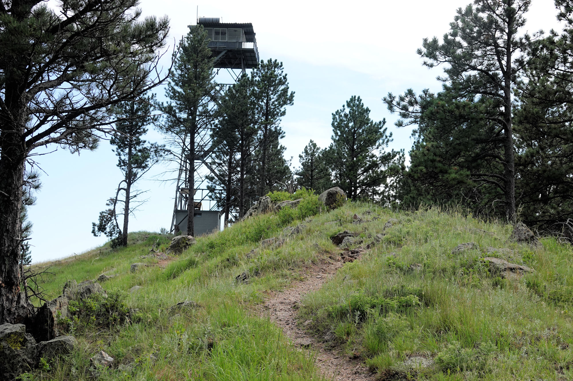 photo: Rankin Ridge - Fire tower - 7-16-18. Photo by Jim Walla.