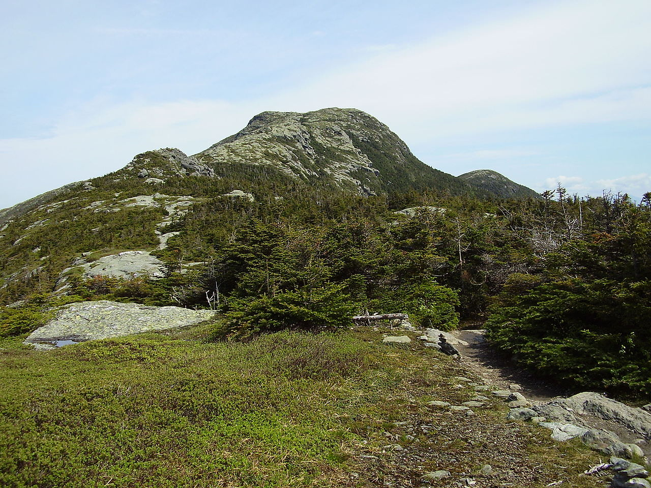 photo: The view of Mansfield's summit from the Long Trail. Photo by Calzarette/wiki.
