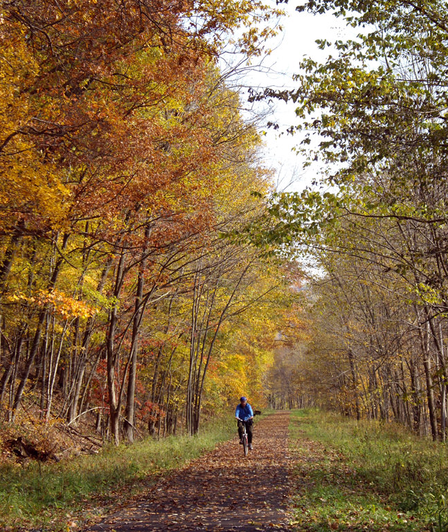 photo: Trail in autumn. Photo by Mary Shaw.