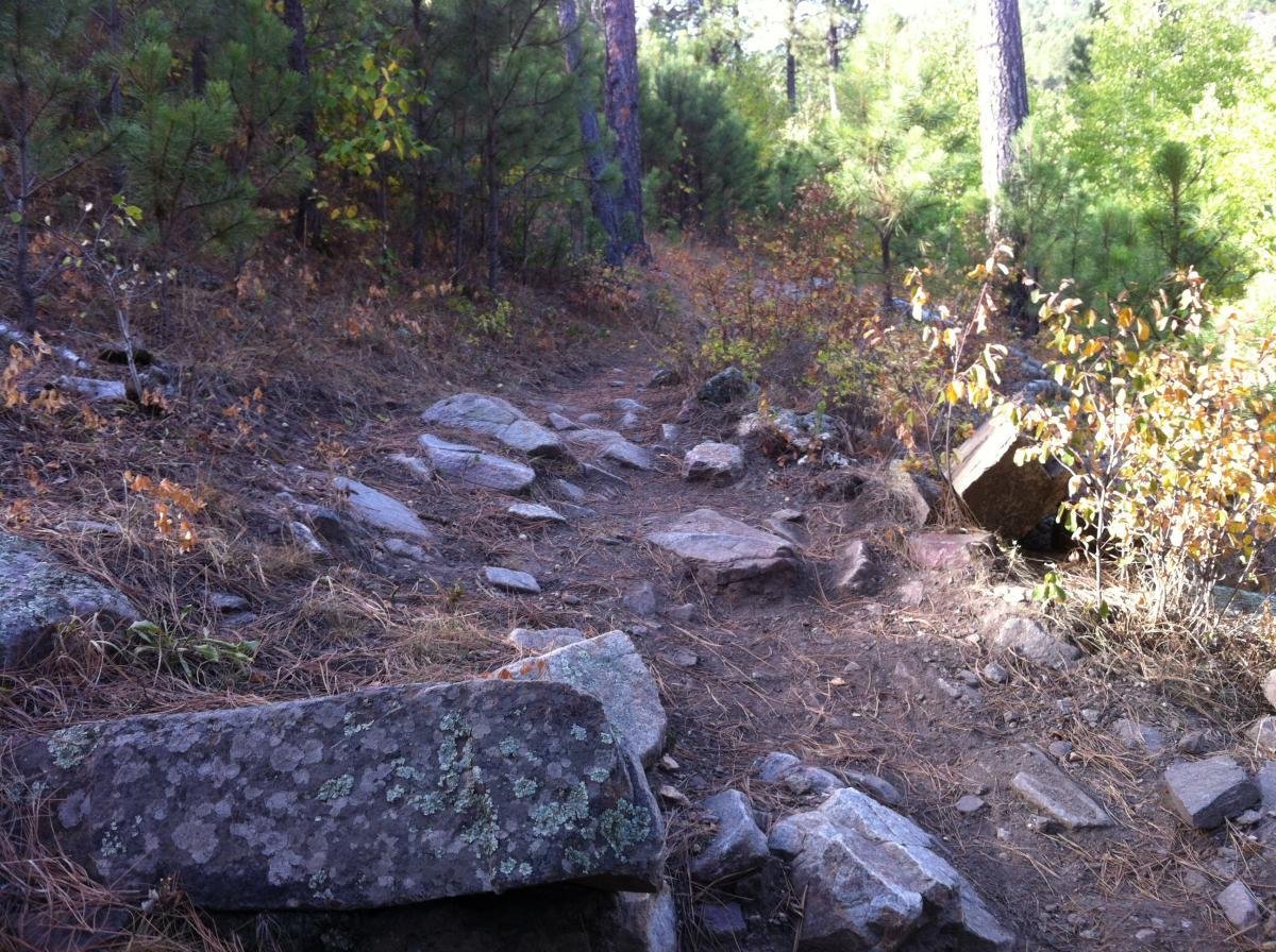 photo: Rock challenges on the trail. Photo by Singletracks/GTXC4.