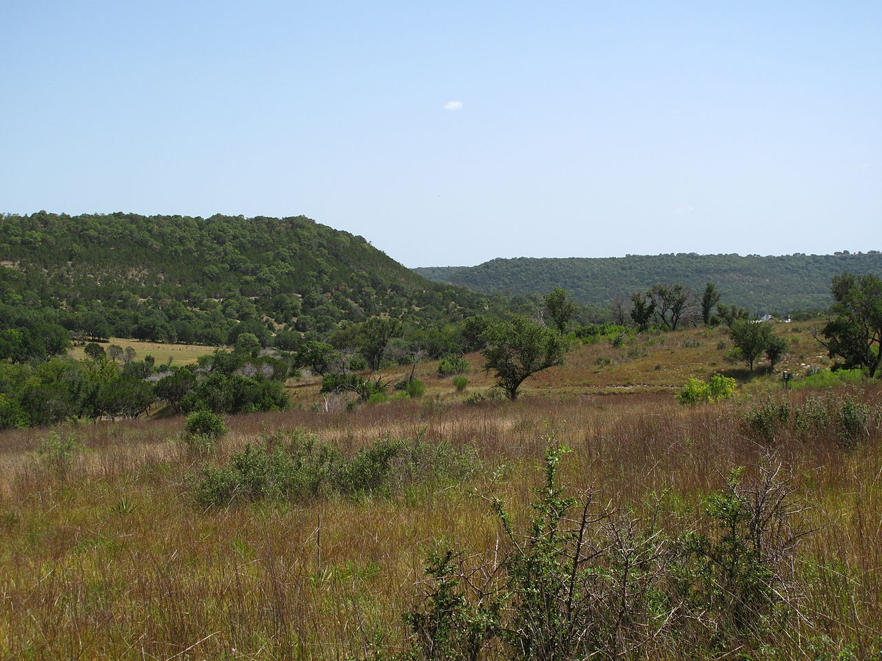 photo: A view of the Balcones Canyonlands National Wildlife Refuge. Photo by Matthewrutledge.