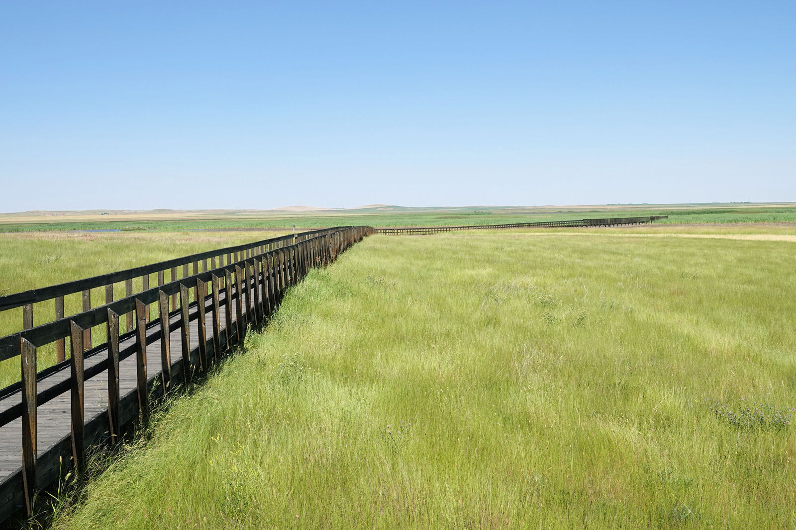 photo: Prairie-Marsh Boardwalk - Benton Lake NWR - 7-20-18. Photo by Jim Walla.