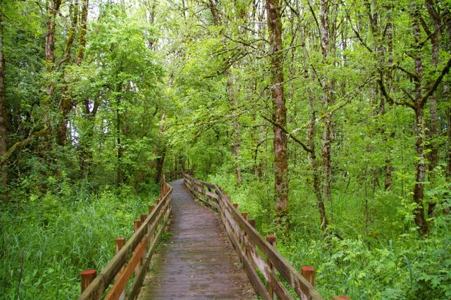 photo: Boardwalk section of rail-trail. Courtesy of Trailkeepers of Oregon. Photo by John Sparks.