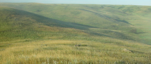 photo: Grassland hills and prairie. Photo by USFWS.