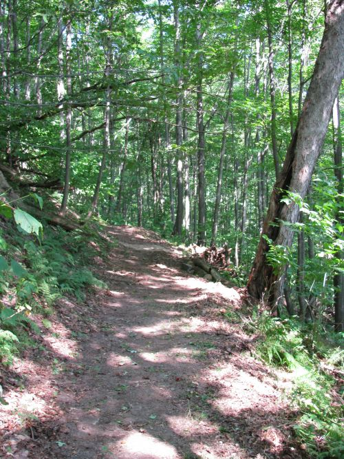 photo: The hiking section of the 6-To-Ten Trail climbs through the wooded Allegheny Front.