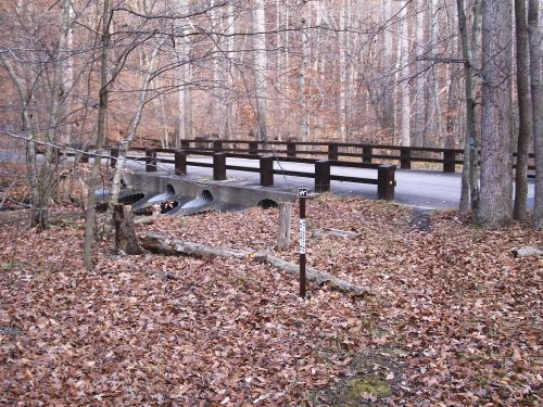 photo: Walking Bridge
