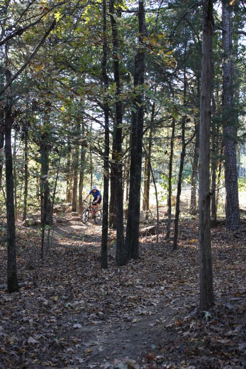 photo: Mountain Biking