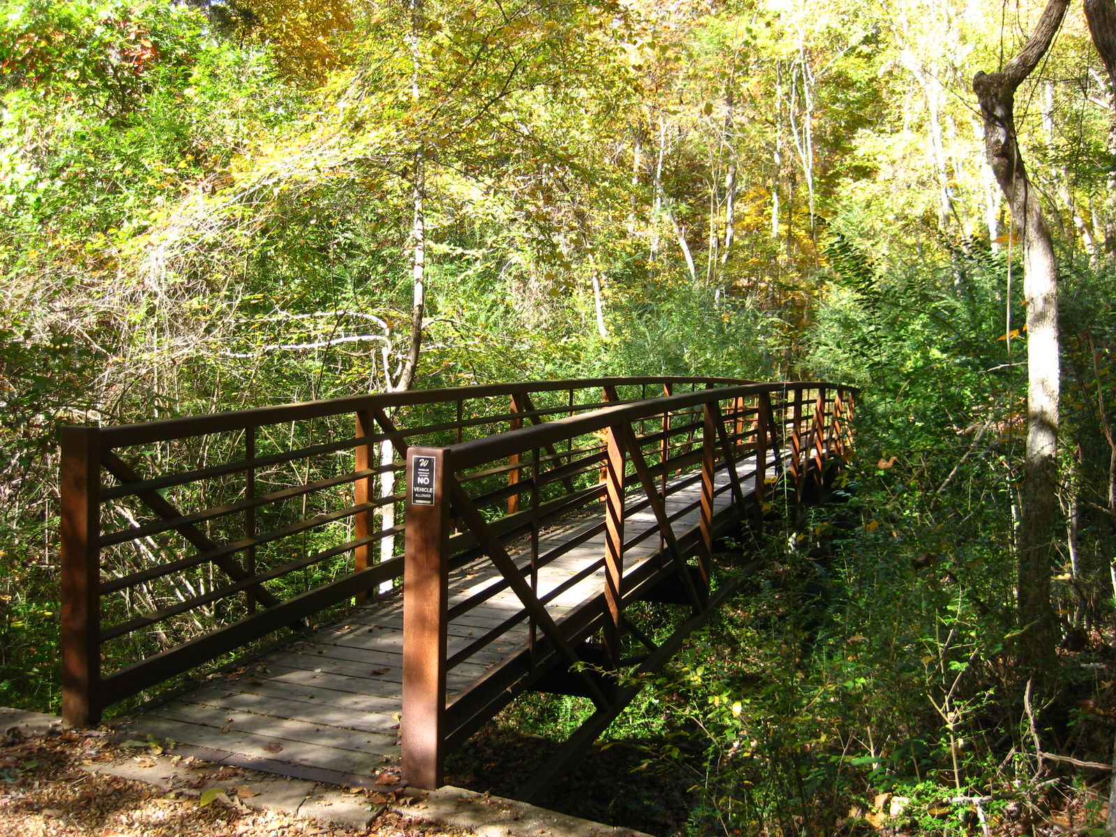 photo: One of the four bridges in Bailey's Woods.