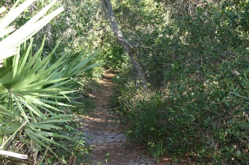 photo: Rustic Flagler Trail in beautiful Seminole County, Florida