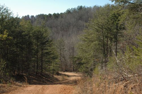 photo: Freedom Hills Trail System