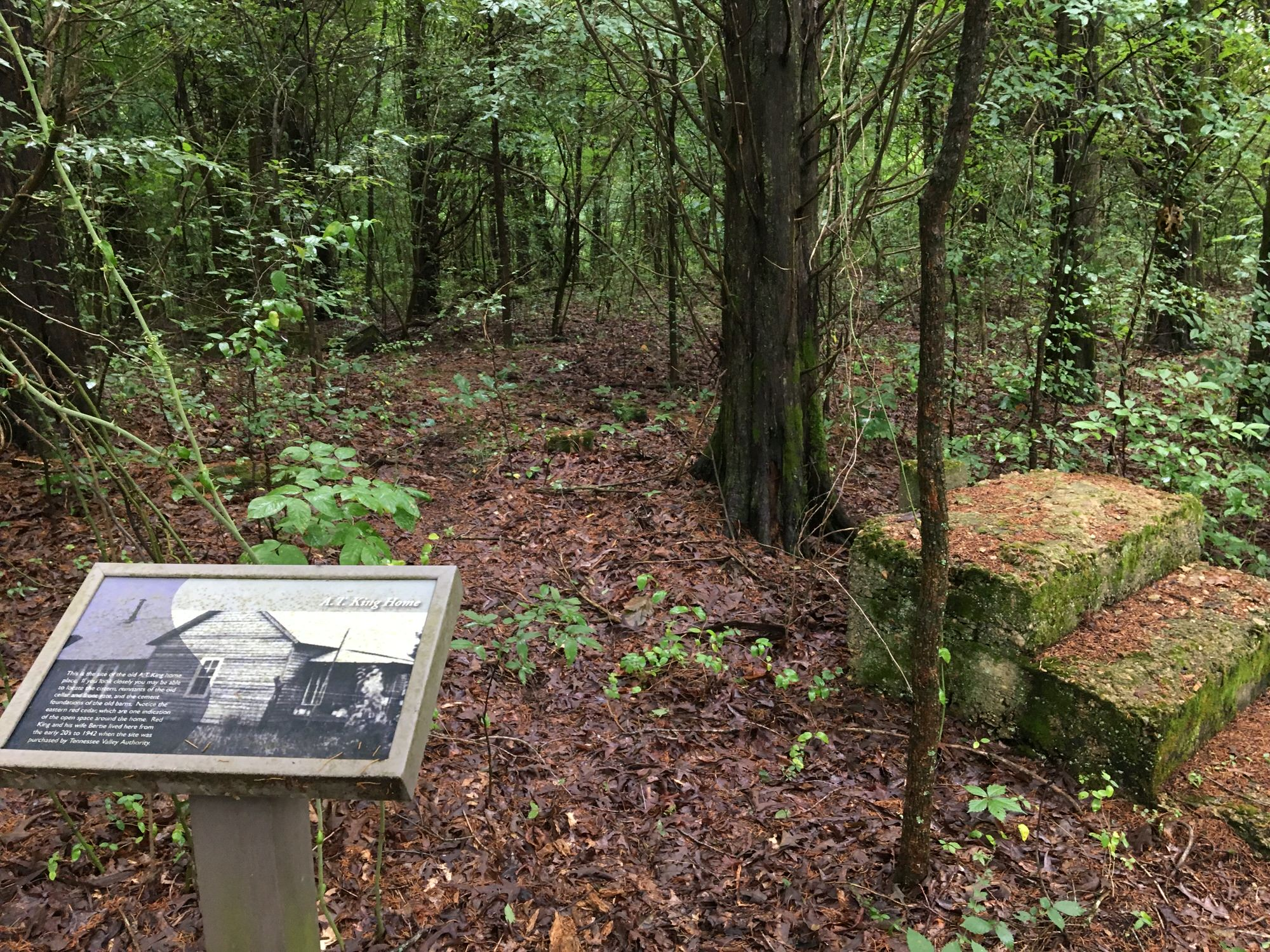 photo: The nature trail features interpretative signs that point out former grist mill and home sites. Photo by Donna Kridelbaugh.